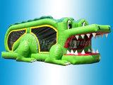 Krokodil_