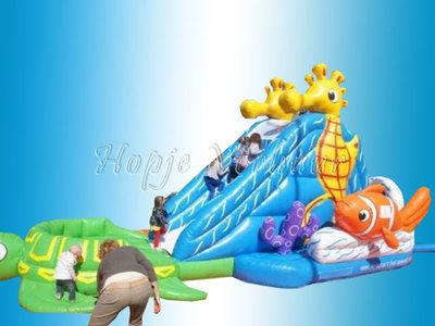 Nemo waterglijbaan of glijbaan