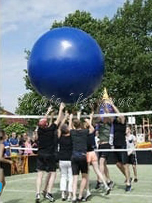 Mega volleybal