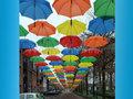 Parapludak
